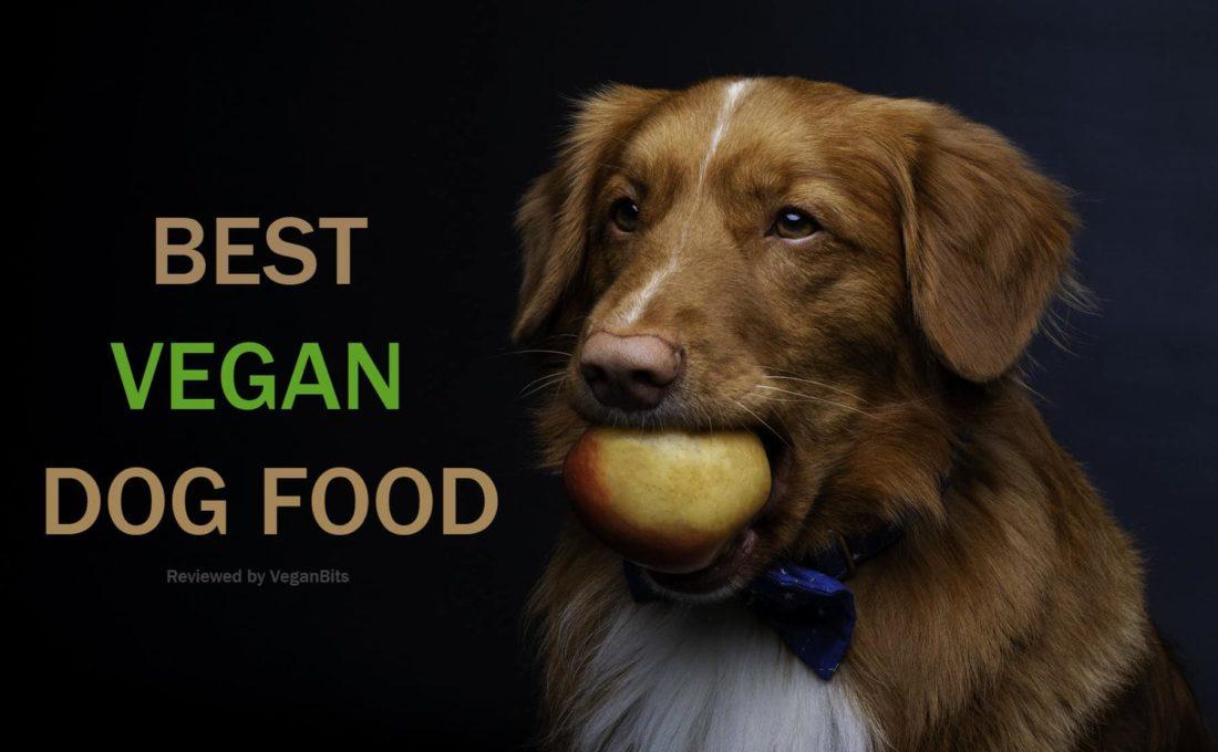 best vegan dog food list